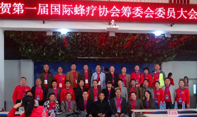 第一届国际蜂疗大会